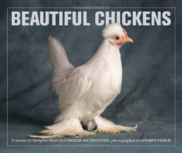 Beautiful Chickens (ex 9780711231924)