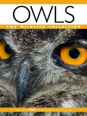 Owls (Wildlife Collection)