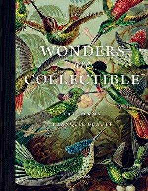 Wonders Are Collectible: Taxidermy