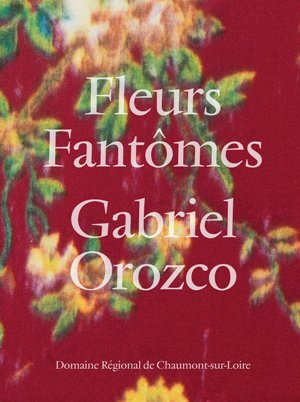 Gabriel Orozco - Fleurs Fantomes