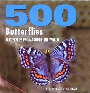 500 Butterflies