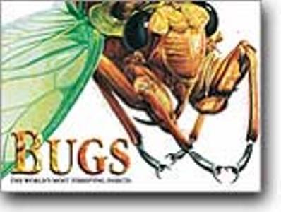Bugs - Expert Guide